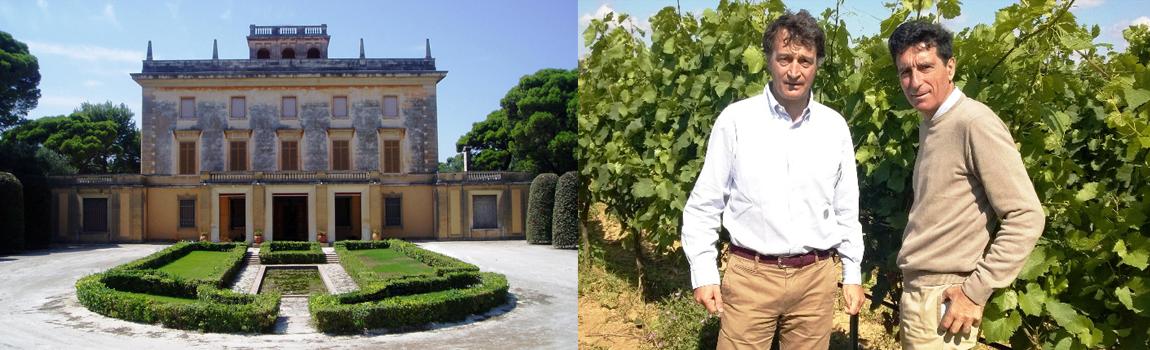 Royal Evocative Vineyards
